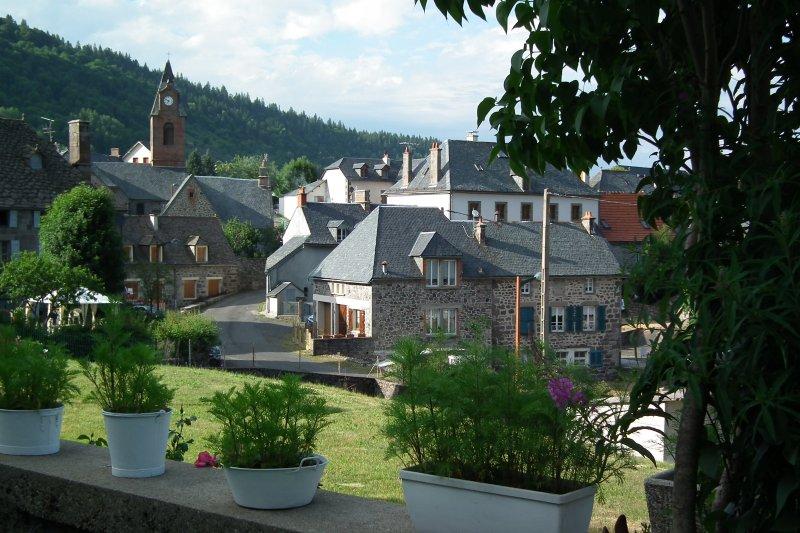 Gîte de la Laiterie, vacation rental in Albepierre-Bredons
