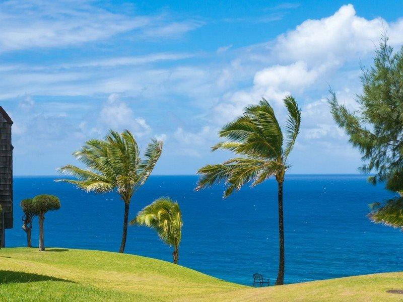 F1: 1 bedroom, 1st floor, oceanfront, vacation rental in Princeville