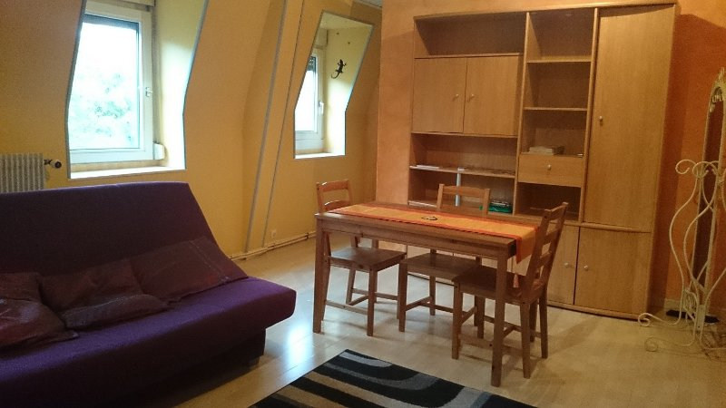 F3 en DUPLEX, MEUBLÉ ÉQUIPÉ 'Cité administrative', holiday rental in Pfastatt
