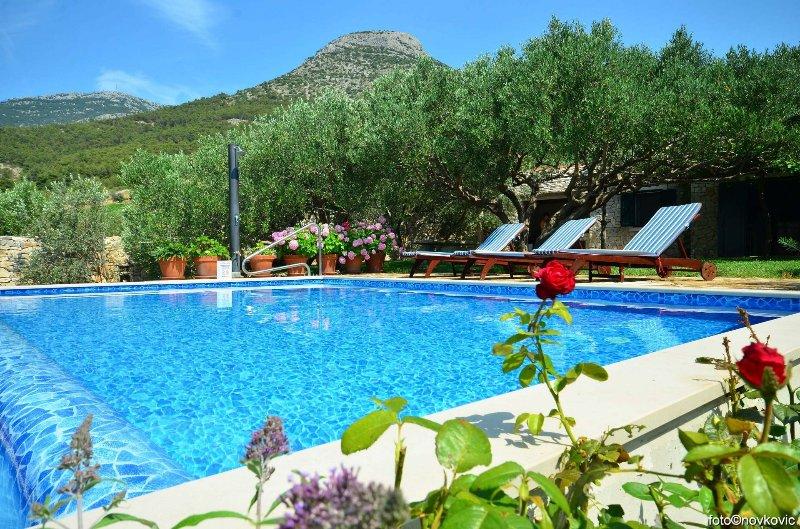 Vojo - private swimming pool: H(4) - Bol, casa vacanza a Murvica