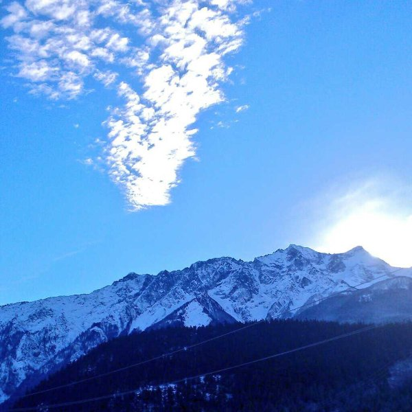 Ver Sky Blue Bird & Mt Currie