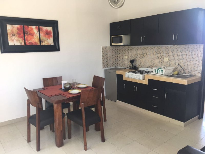 1 bedroom Apartment with pool, holiday rental in Playa Maroma