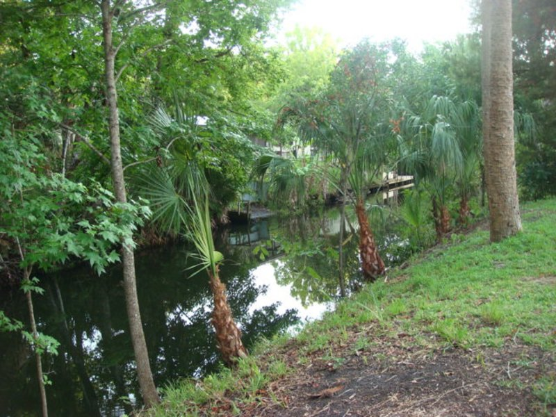 Homosassa/Chassahowitzka River Rental-waterfront w 2 kayaks & boat house use., holiday rental in Homosassa Springs