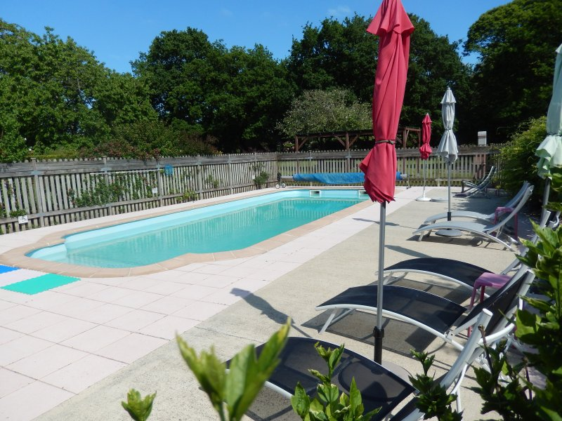 LAURIER - GITE 6 PERSONNES - PISCINE CHAUFFEE- SEMAINE DU 21 AU 28/07 : 690.00 E, holiday rental in Rohan