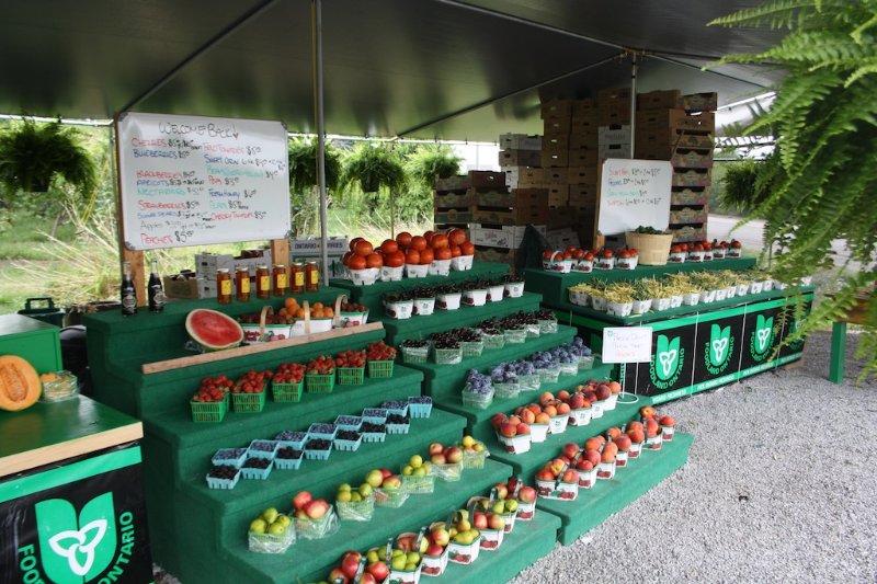 Fruits et légumes frais locaux
