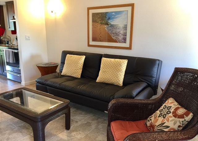 New living room couch/sleeper