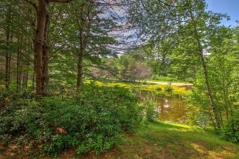 Relax en el borde de un estanque tranquilo y disfrutar de las vistas de la flora y fauna natural.