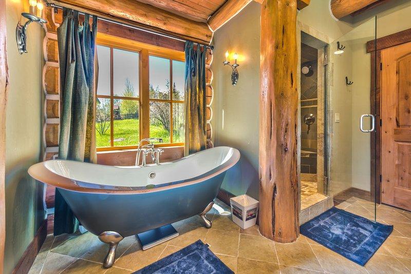 Grand Master Bathroom avec baignoire de trempage