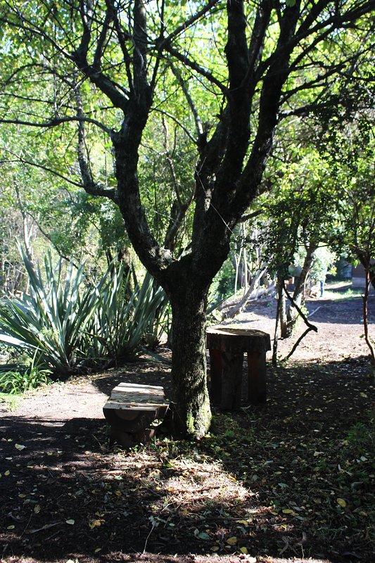 jardin con estaciones de descanso.