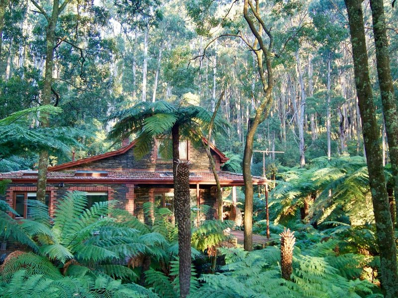 Olivia's in the Forest, 5 Star Property. !0 minutes from Healesville.