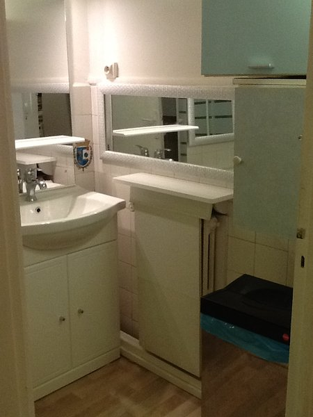Washbasin, towels, hair dryer, shower, toilet
