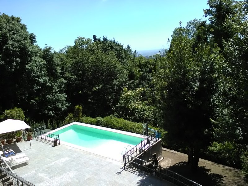 The villa has a private pool surrounded by greenery