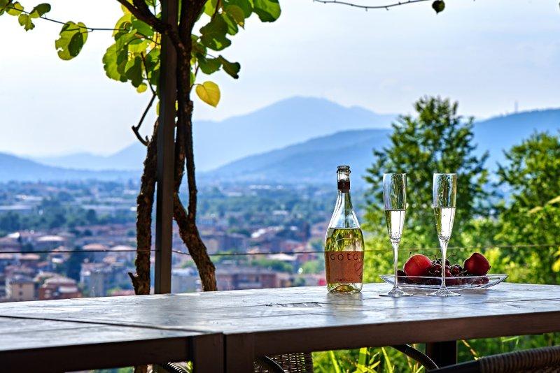 Casa San Giorgio - Stunning View House, holiday rental in Zandobbio