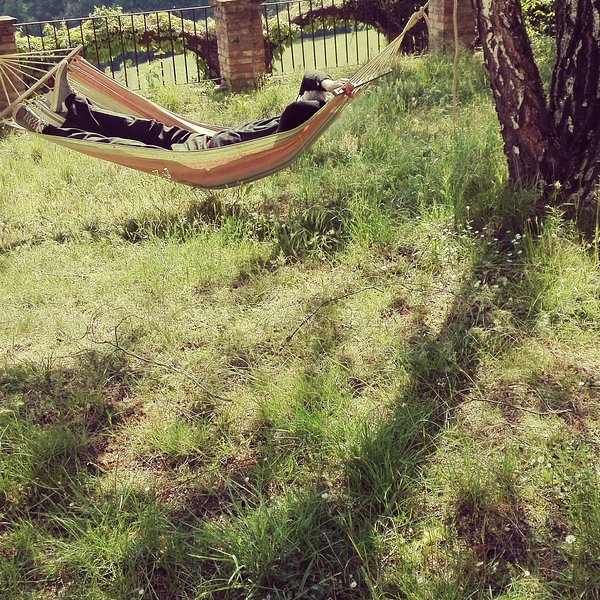 hammock after lunch