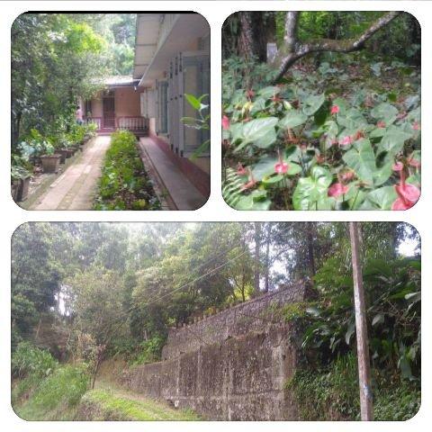 Memories Holday Bungalow, casa vacanza a Passara