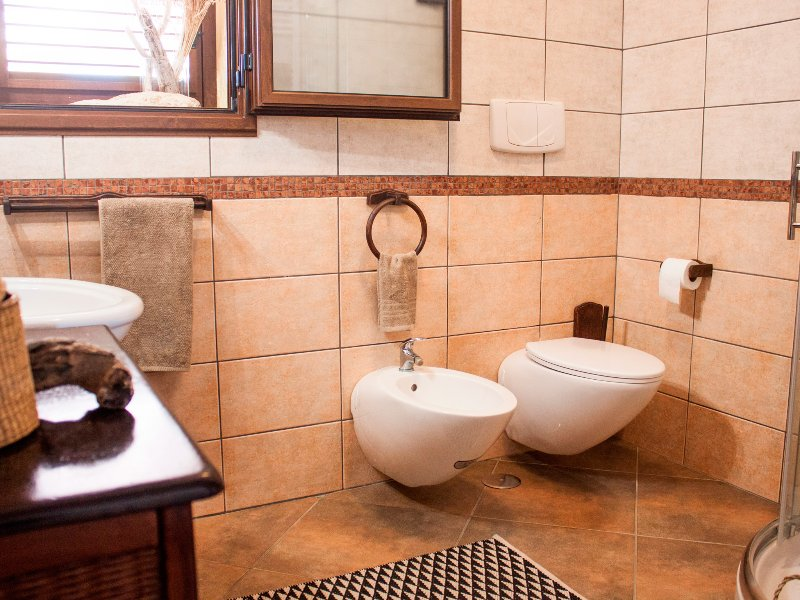 Bathroom with shower, toilet and bidet. A hairdryer is provided