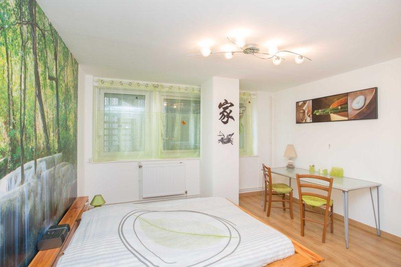 Zen room, Ferienwohnung in Vandoeuvre-les-Nancy