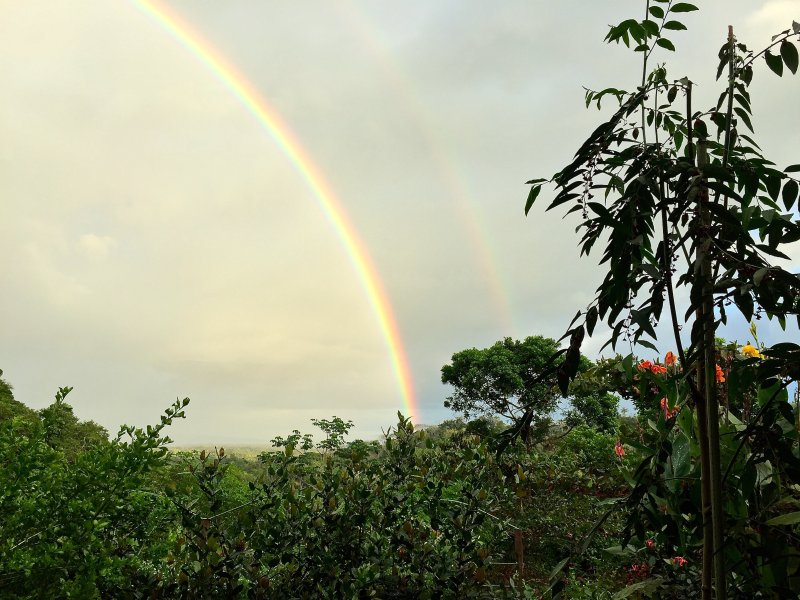 Rainbow over the Gulfo Dulce