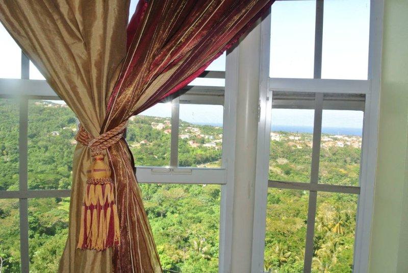 Una vista desde la ventana