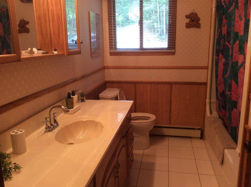 Cuarto de baño moderno de 4 piezas