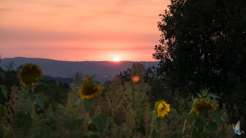 magnifiques couchers de soleil