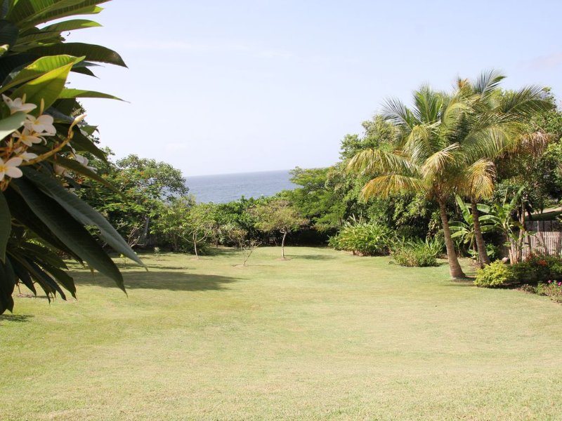 View of the garden and ocean from the kitchen and living room.