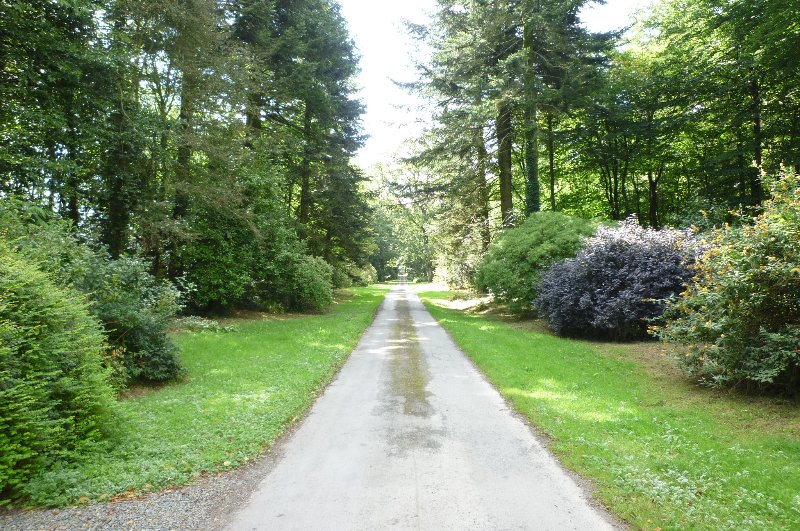 The main drive to the Castle. Visitors staying in the Lodge have free access throughout their stay.