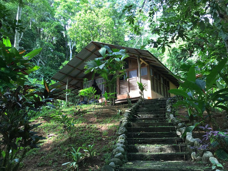 Au coeur de la jungle d'Osa, vacation rental in Corcovado National Park