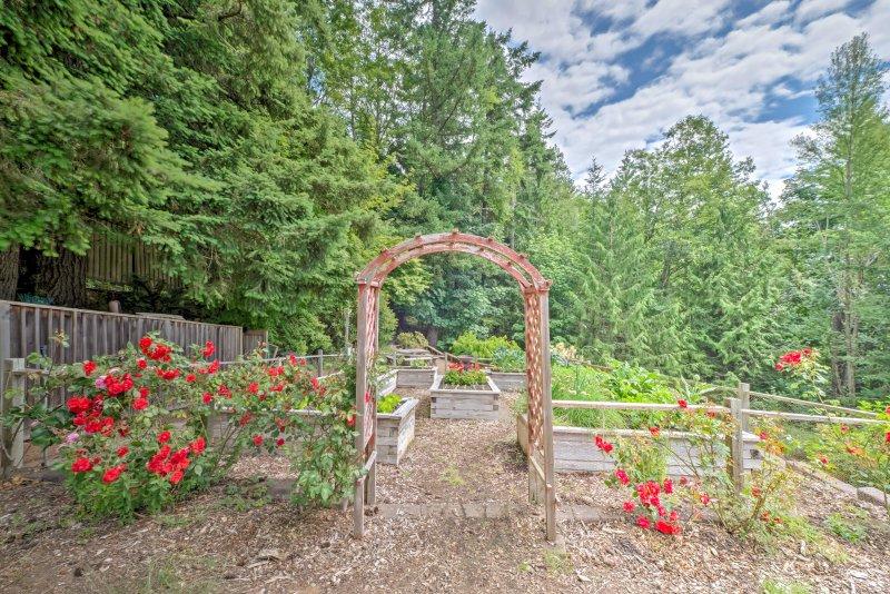 Te encantará el jardín de vegetales y macizos de flores hermosas en esta exuberante propiedad.