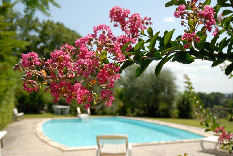 Villa con piscina, holiday rental in Ponzano Romano