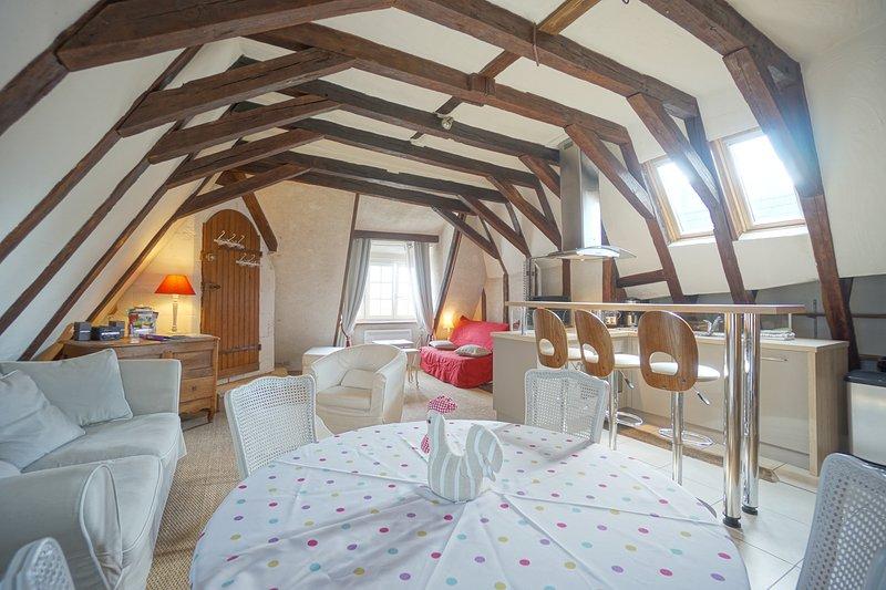 Gîte du vieux Tours Rôtisserie, holiday rental in Tours