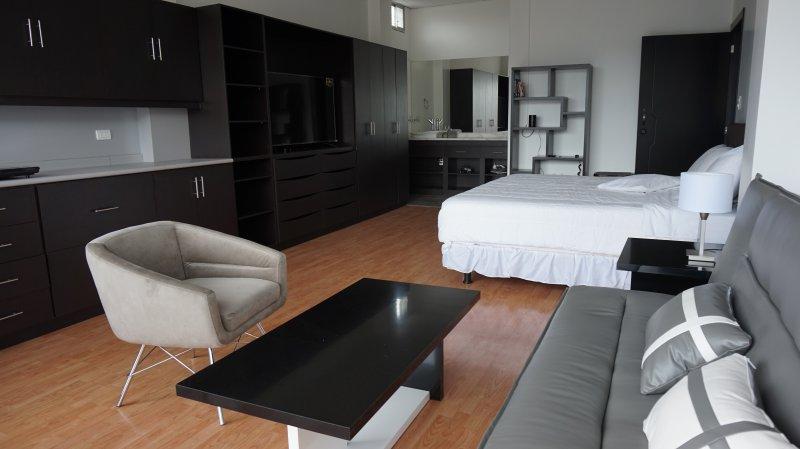 Modern Luxury Studio Apartment Downtown