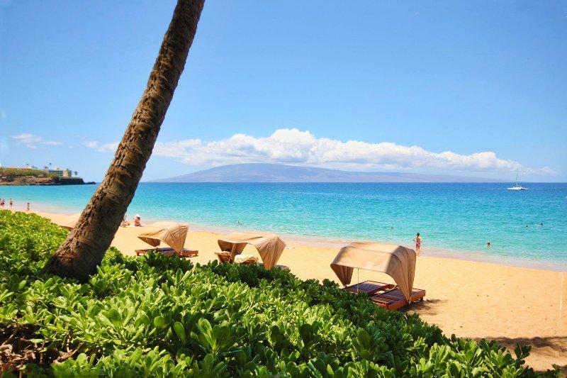 La spiaggia n. 1 di Maui ha votato a pochi passi dal condominio!