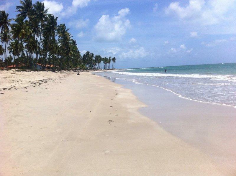 Una playa paradisíaca