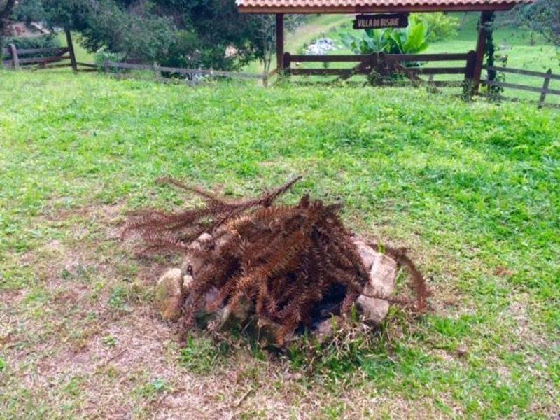 small space p / make a foqueirinha in the backyard to heat qdo der esfriadinha that ...