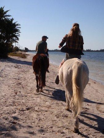 Ga paardrijden in het nabijgelegen strand Palma Sola Bay!