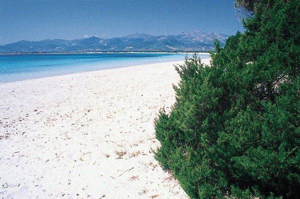 aldia tip of the beach near the mono