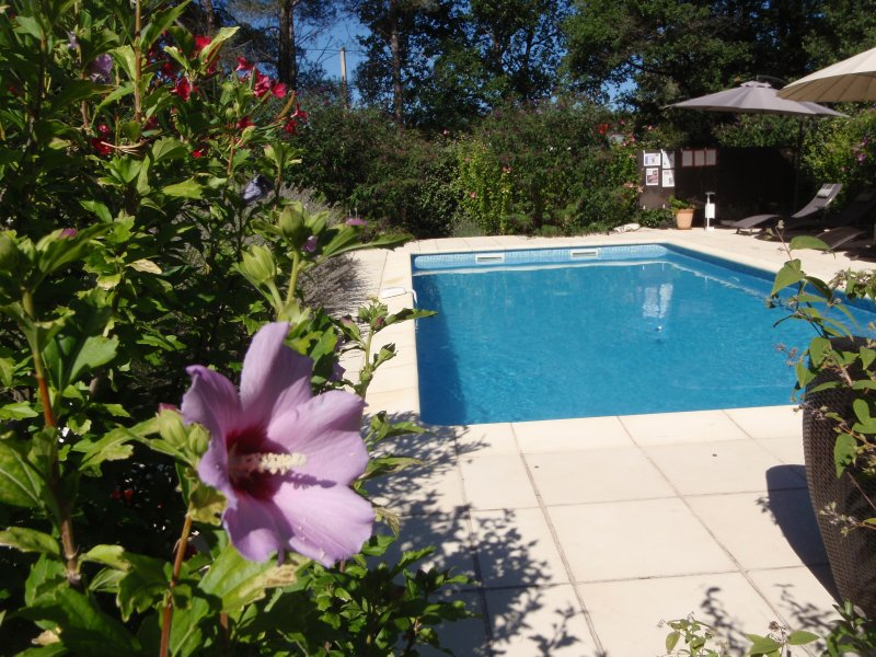Beautiful pool, surrounded by flowering shrubs for year-round colour