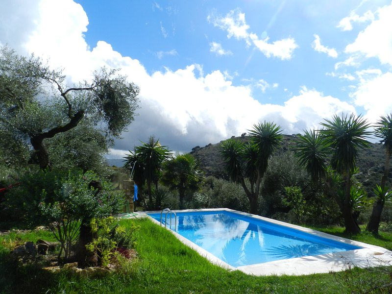 villa with private swimingpool, walking distans to amenities, vakantiewoning in Sierra de Grazalema Natural Park