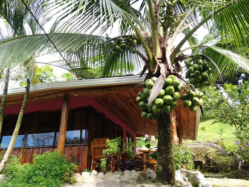 Arroyo Cottage minutes from Manuel Antonio, holiday rental in San Carlos