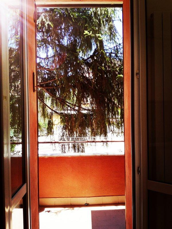 Kitchen Balcony - view