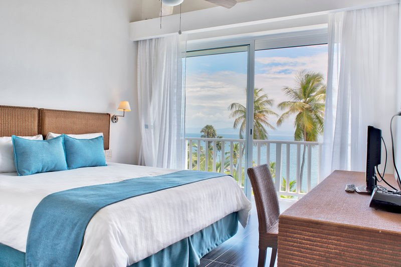 Perfect Ocean View w/ FREE WIFI (XV-302), vacation rental in Santa Barbara de Samana