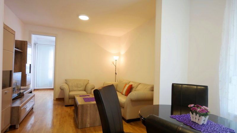 Apartment with private parking in Belville, Ferienwohnung in Obrenovac
