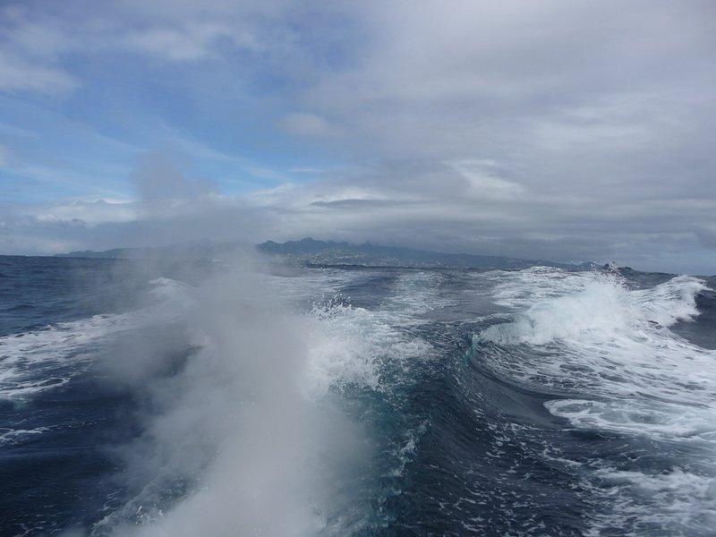 Giro in barca verso casa dai Tobago Cays