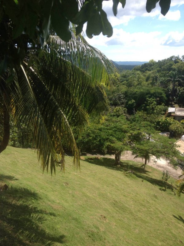 Mountain view peace and quiet bird watching view, holiday rental in Hanover Parish
