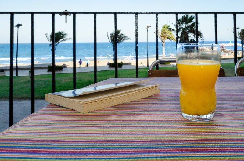 Terrasse avec vue spectaculaire sur la plage.