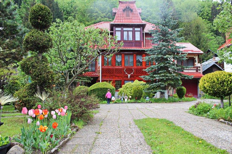 Vila Alexandra/Sinaia, holiday rental in Pietrosita