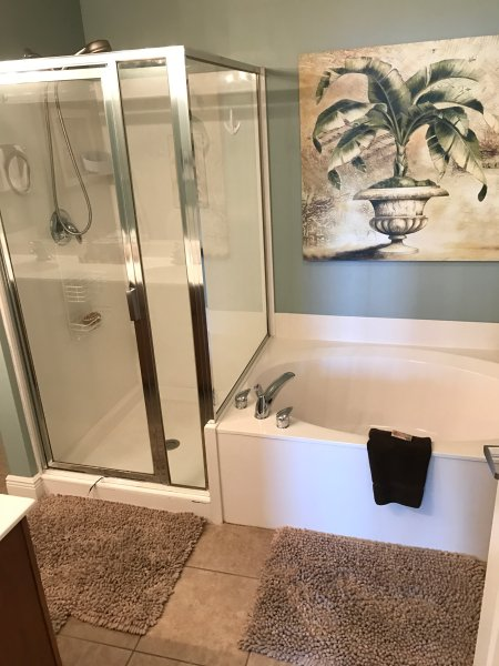Master bath - garden tub and shower