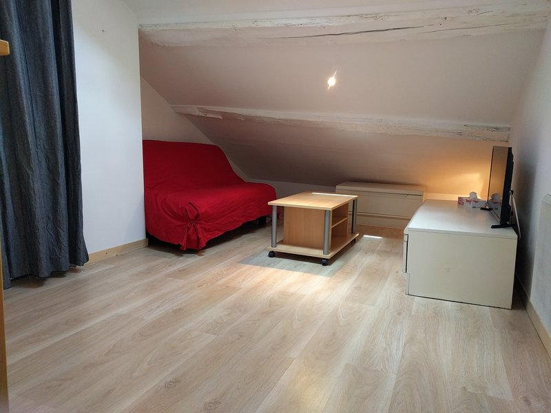 Little and useful studio Evian Center, casa vacanza a Saint-Paul-en-Chablais
