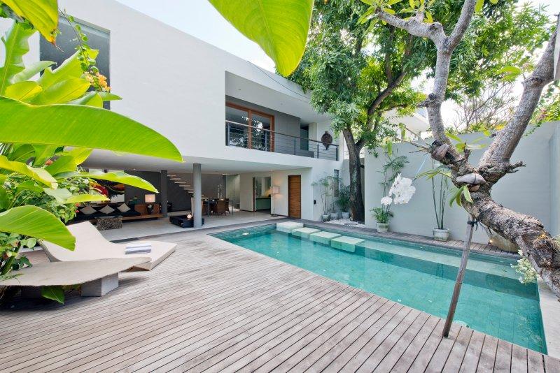 terraza, piscina y árboles tropicales